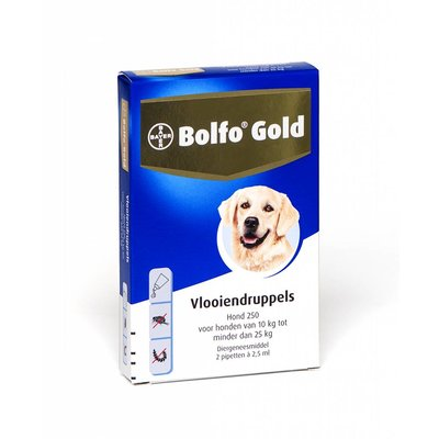 Bolfo Gold hond 250 (2 pipet)
