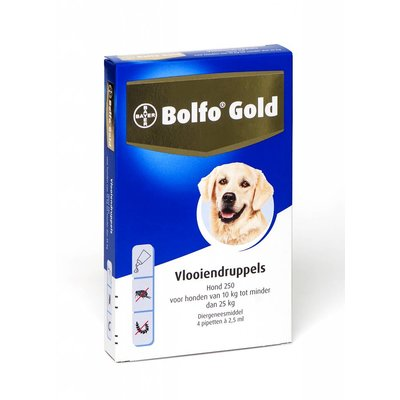 Bolfo Gold hond 250 (4 pipet)