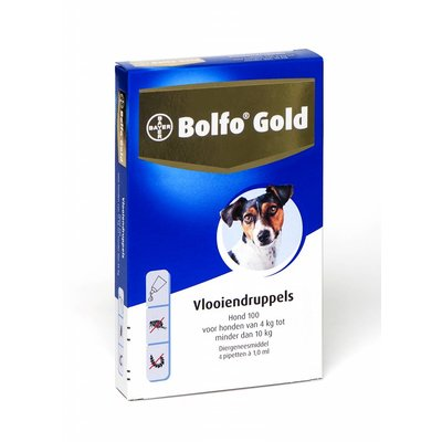 Bolfo Gold hond 100 (4 pipet)