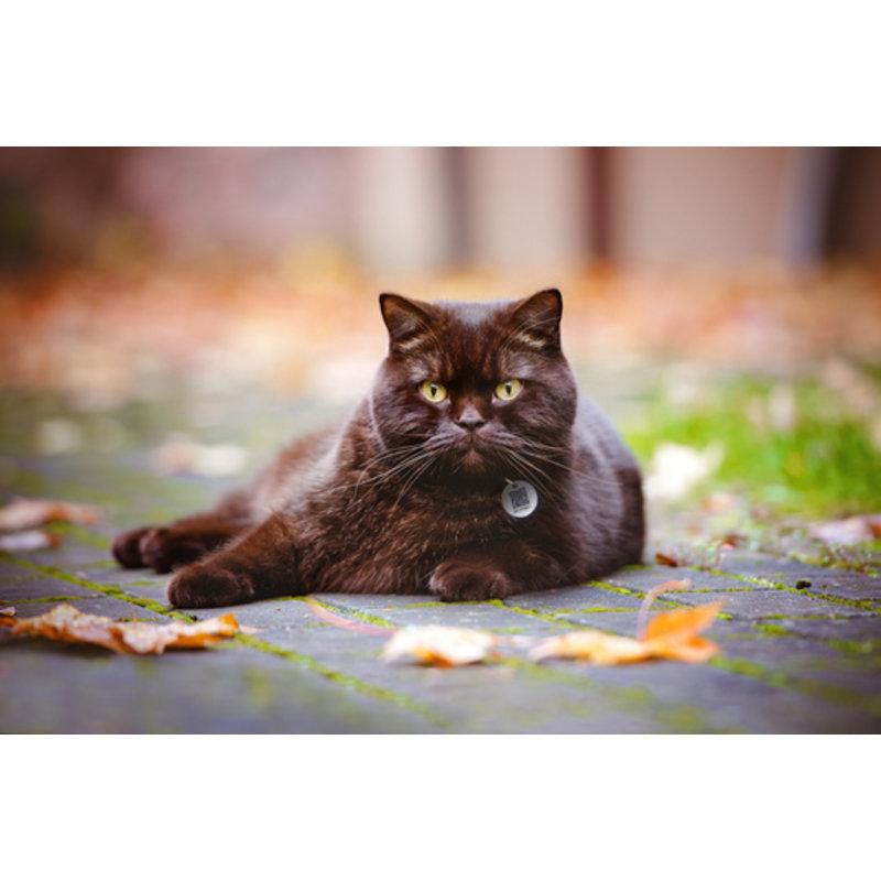 Spotted voor honden en katten
