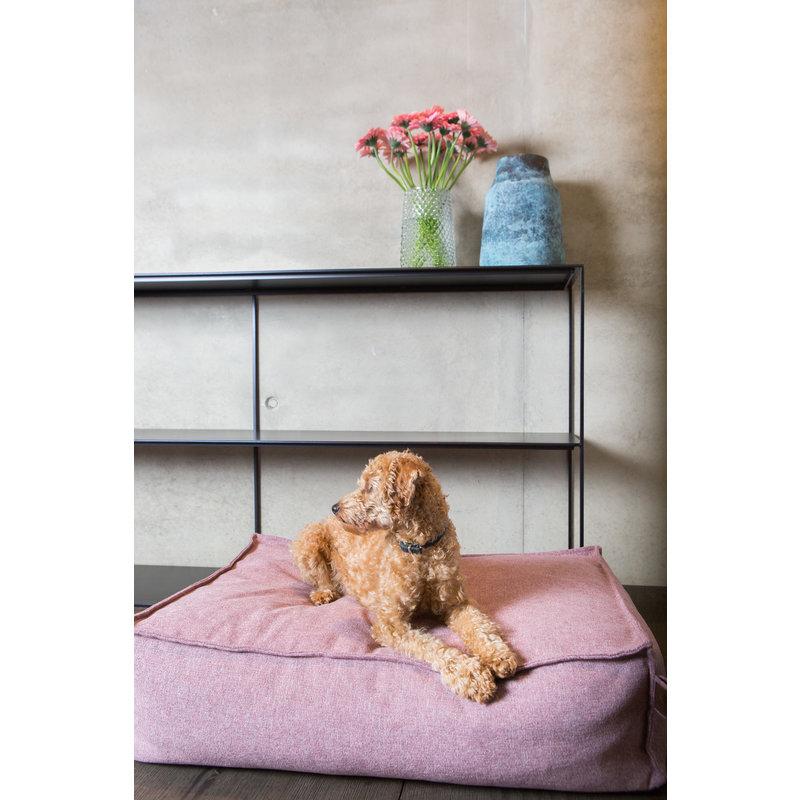Fantail Stargaze Hondenkussen