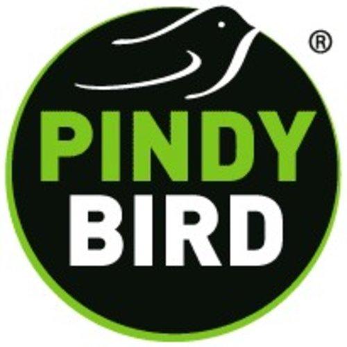 Pindybird