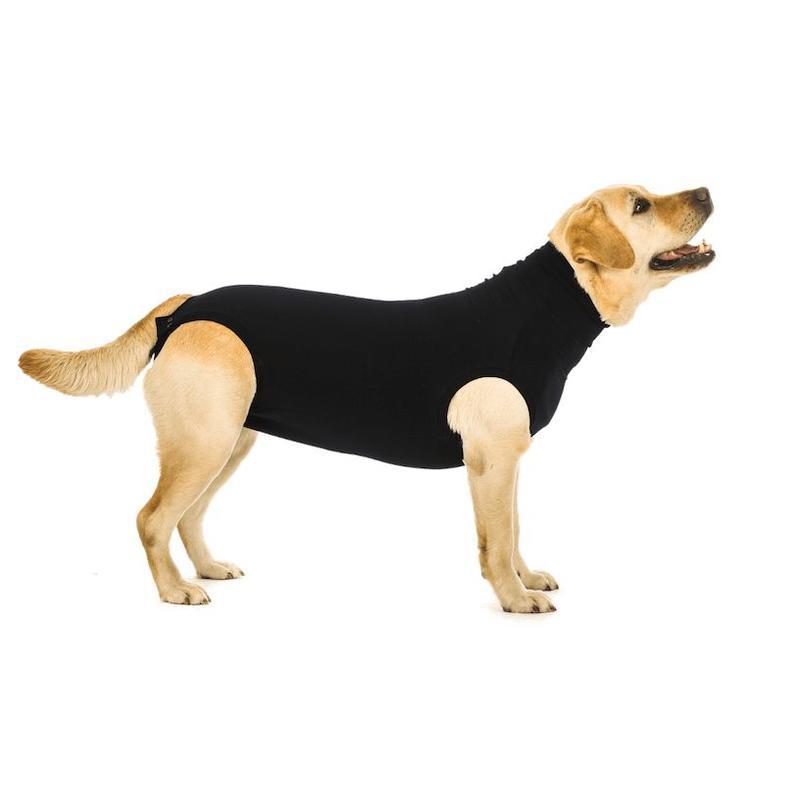 Beschermend shirt bij wonden en plekken voor honden