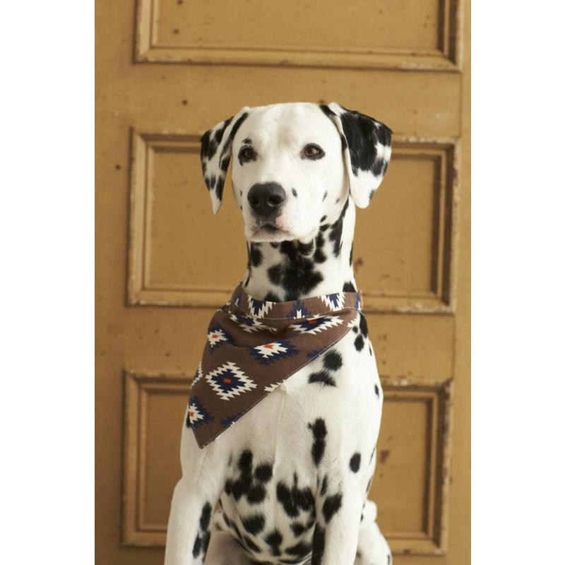 Twee-zijdige bandana voor honden