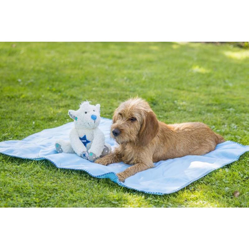 Lief Giftset voor pups