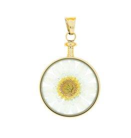 blumenkind® Anhänger gold, Blume weiß