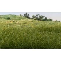 Statisches Gras Dunkelgrün (7 mm)