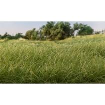 Statisches Gras Mittelgrün (12 mm)