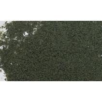Belaubung - Nadelbaumgrün