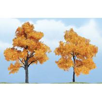 Premiumbäume Herbstahorn