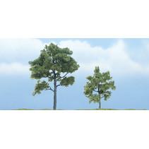Premiumbäume Heuschreckenbaum