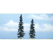 Premiumbäume Fichte