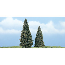 Premiumbäume Nadelbaum