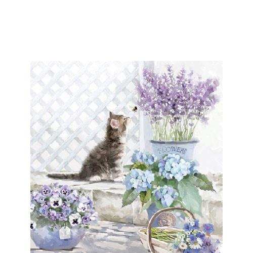 Ambiente Cat  napkins