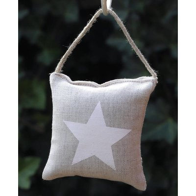 Kussentje witte ster