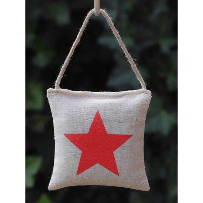 Kussentje rode ster