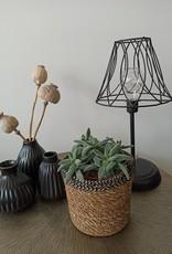 Lamp Shilo LED -stripe-