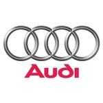 Audi wiellagers, wielnaven, aandrijfassen en homokineten.