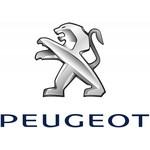 Laadkabel Peugeot