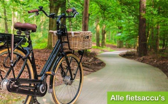 Nieuw: Fietsaccus.nl