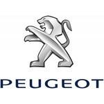 Laadstation Peugeot