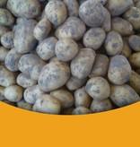 Licht kruimig  Zeeuwse Klei Aardappelen (Meerlanders)