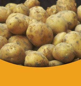Vastkokend Nieuwe oogst  Nicola's