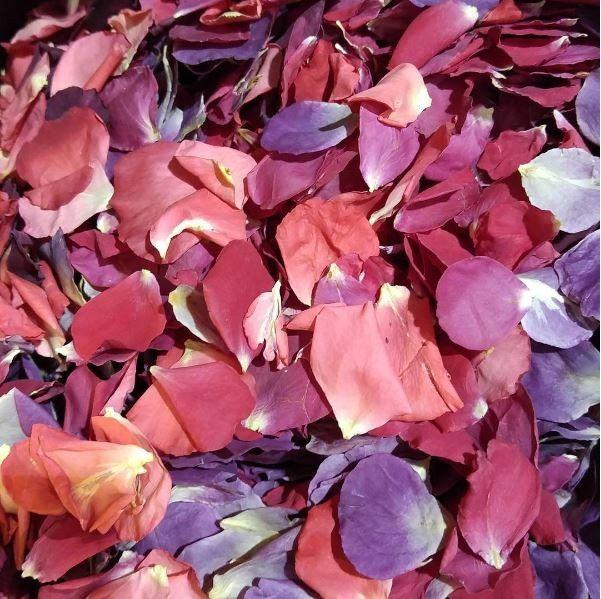 Proto-pasta 1.75 mm Aromatic Rose HTPLA filament, Red Violet