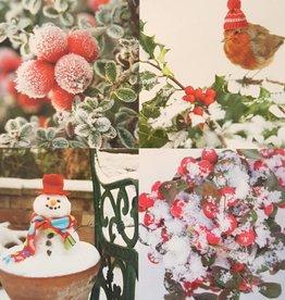 Kerstkaarten 10stuks prettige kerstdagen en een gelukkig nieuwjaar - sneeuwpop en winterbessen