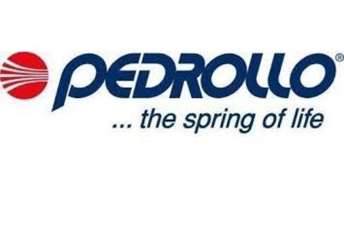 Pedrollo pumps