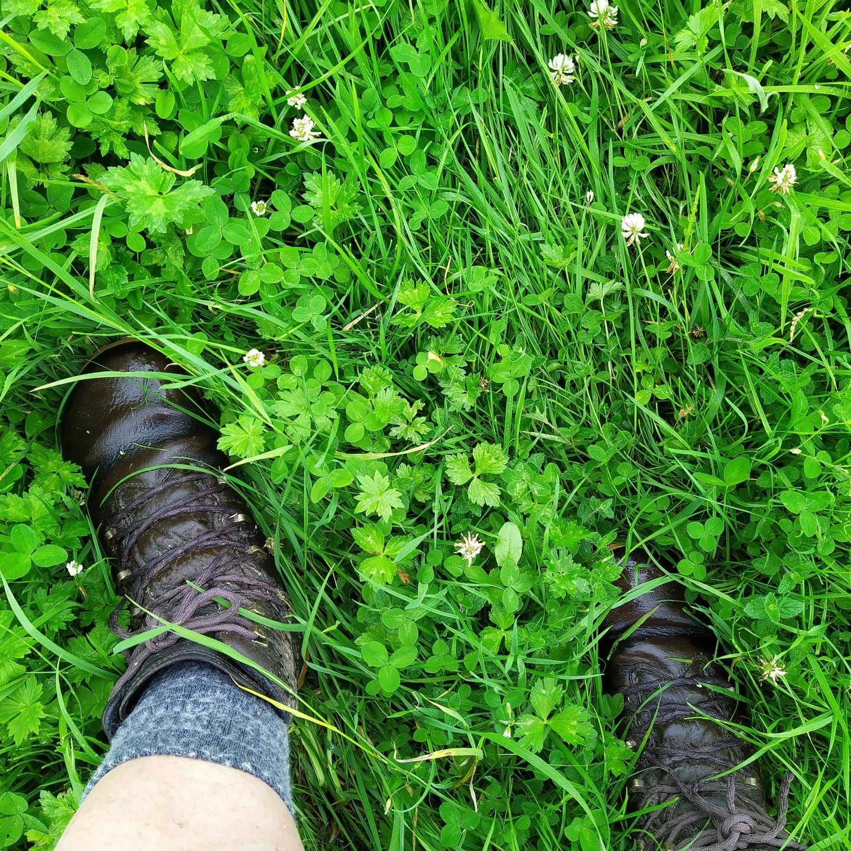 Vivobarefoot Tracker Forest ESC - 4 nat gras