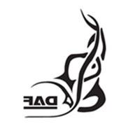 Raamtribal DAF 2 st binnenplak