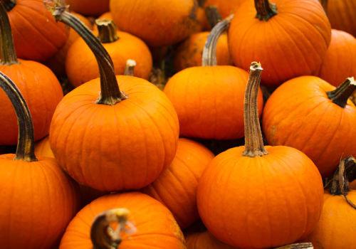 Inspiratie voor de herfst
