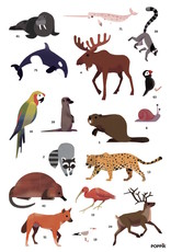 Poppik Animals of the world