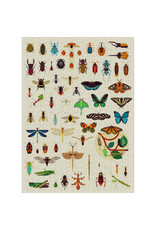 Poppik Poppik Puzzle Insects