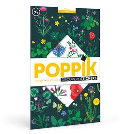 Poppik Discovery poster Botanisch