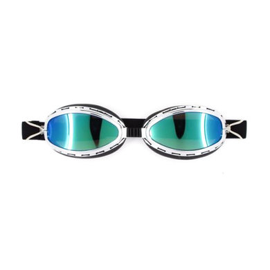 CRG chrome speedster motor goggles