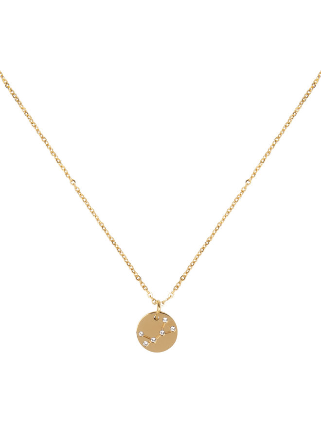 Jozemiek Virgin necklace, stainless steel plated with 18k gold with gift card and envelope.