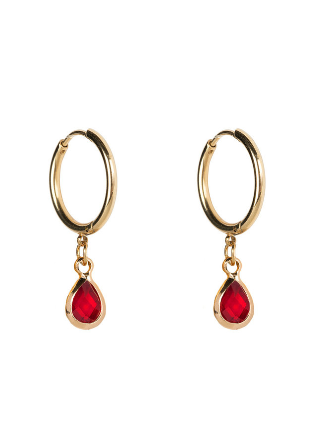 Earring medium stainless steel 14k gold with month stone