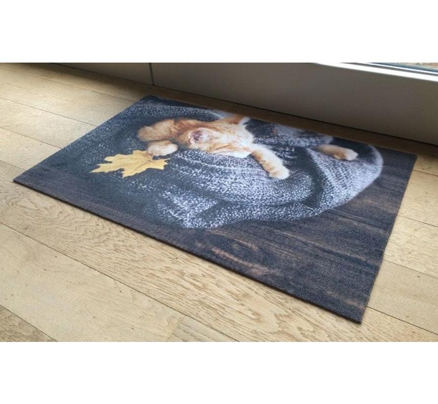 Deurmat foto kitten in deken