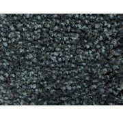 Tapis anti poussière professionel en nylon anthracite