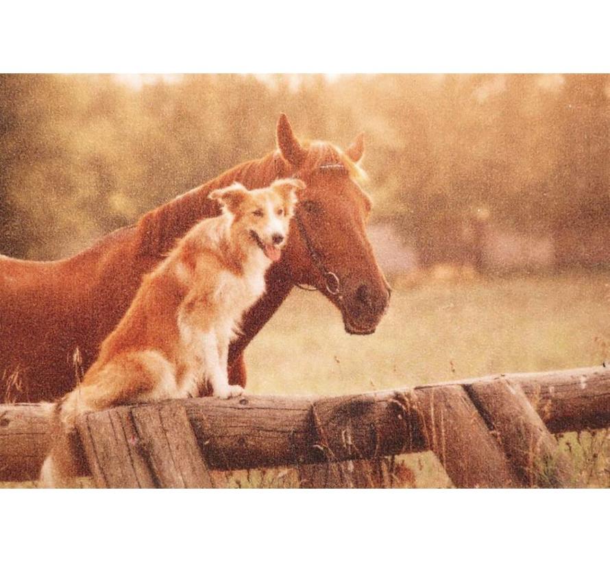 Tapis d'entrée photo chien et cheval
