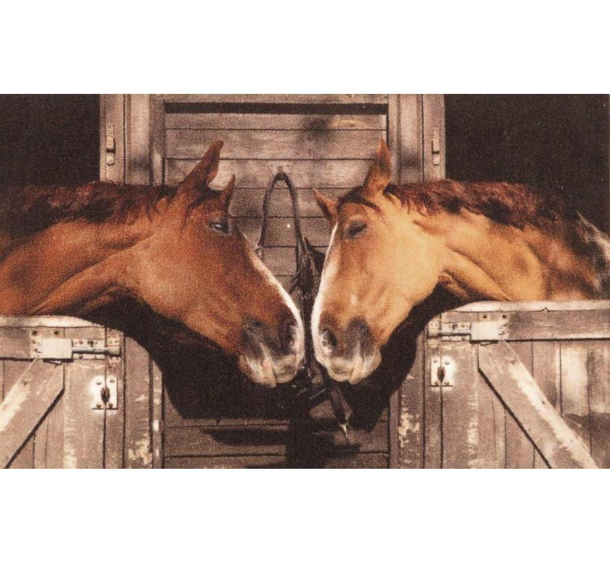 Tapis d'entrée photo chevaux