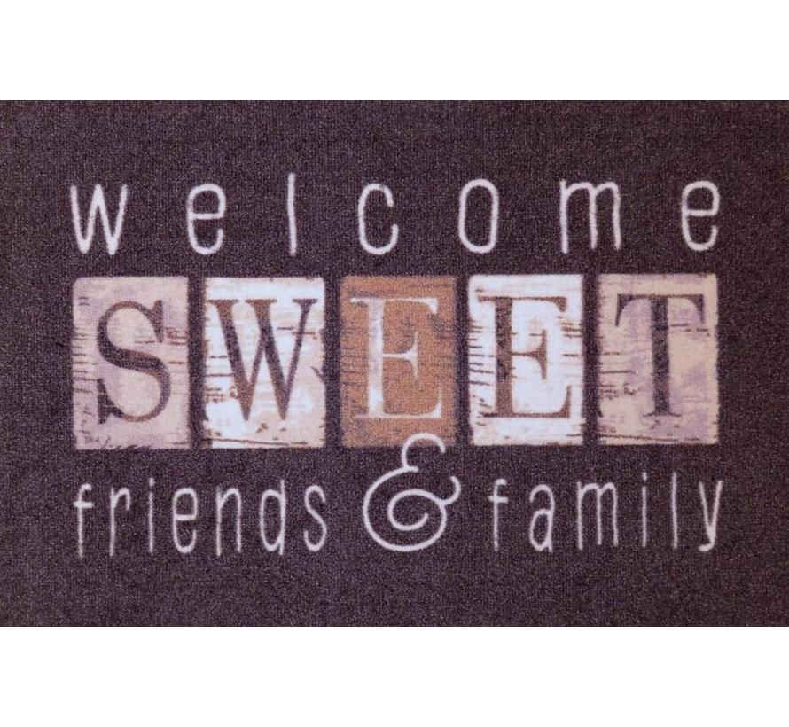 Tapis d'entrée welcome sweet friends & family