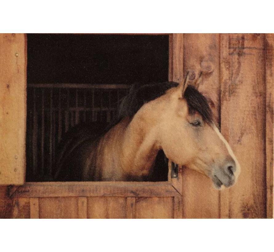 Tapis d'entrée cheval