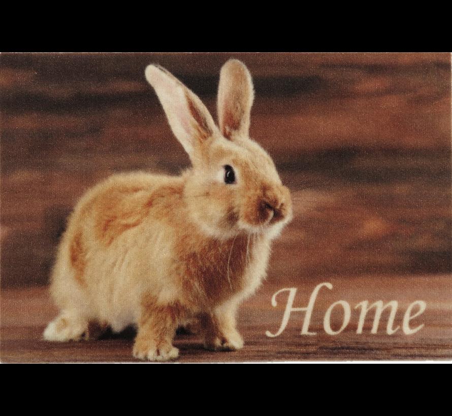 Paillasson photo petit lapin