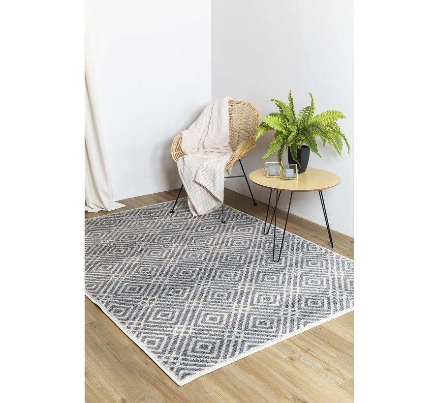Modern tapijt met ruitjes dessin