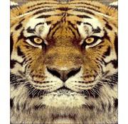 Modern tapijt met tijger