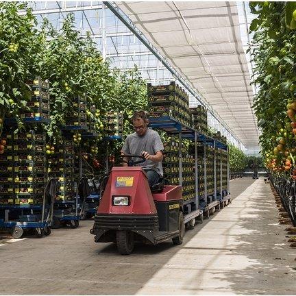 Horticulture Castor Wheels - För alla typer av jordbruksapplikationer
