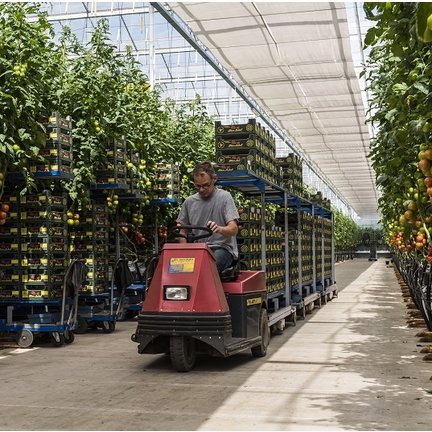 Horticulture Castor Wheels - For all Sorts of Agricultural Applications
